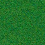 trawiasty